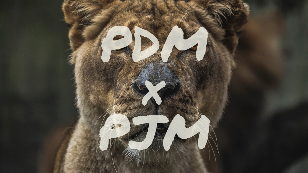 PDM×PJM